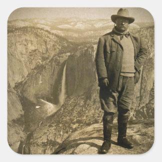 Teddy Rooseveltの氷河ポイントヨセミテの谷 スクエアシール