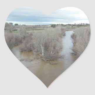 Templeton橋から見られる塩水性沼沢の川 ハートシール