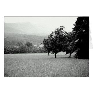 Tennesseの白黒景色 カード