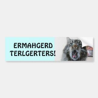 Terlgerters! Ermahgerd! 衝撃を与えられた子猫Tailgaters バンパーステッカー