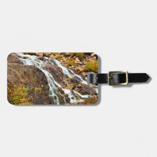 Tetonの壮大な国立公園の滝 ラゲッジタグ