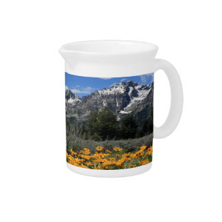Tetonの壮大な国立公園 ピッチャー