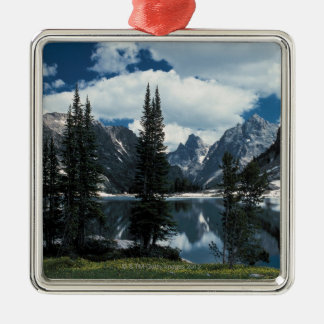 Tetonの壮大な国立公園、ワイオミング メタルオーナメント