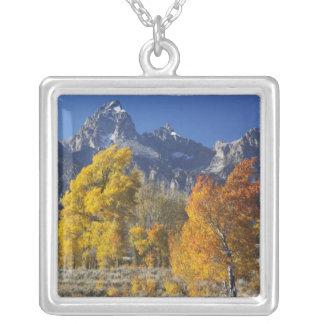Tetonの山地が付いている《植物》アスペンの木 シルバープレートネックレス