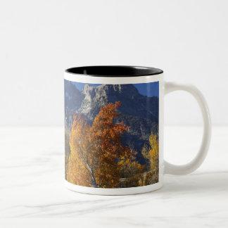 Tetonの山地が付いている《植物》アスペンの木 ツートーンマグカップ