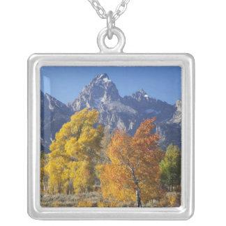 Tetonの山地6が付いている《植物》アスペンの木 シルバープレートネックレス