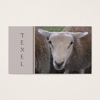 Texelのヒツジの名刺 名刺