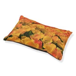 Thespringgarden著オレンジ黄色のチューリップ