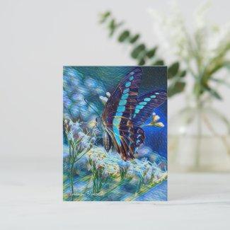 Thoroughwort & Common Bluebottle:Flat Greeting Car カード