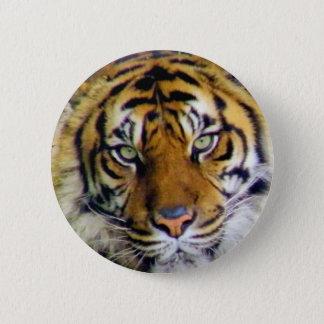 Tiger_ 5.7cm 丸型バッジ