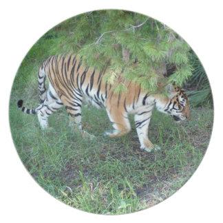 Tiger_Aroara008 プレート