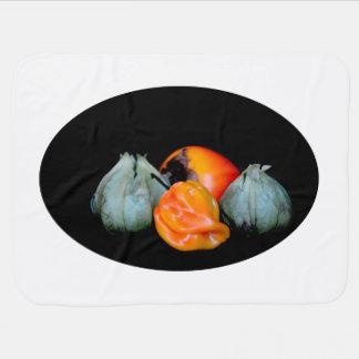 tomatilloのコショウの柿のフルーツ野菜のイメージ ベビー ブランケット
