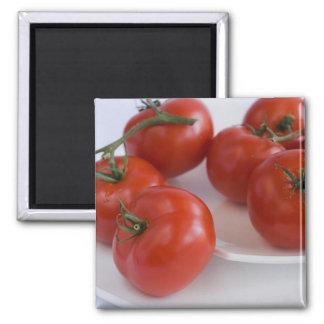 tomatoes_1 マグネット