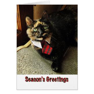 Tortieの季節の挨拶状、主演のBinga カード