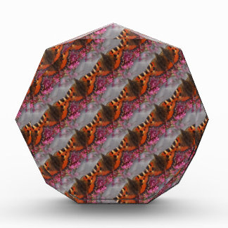 Tortoiseshellの蝶パターン 表彰盾