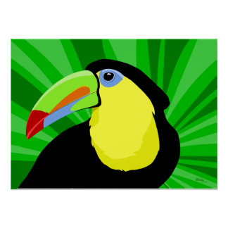 Toucanの芸術のポスターおよびプリント ポスター
