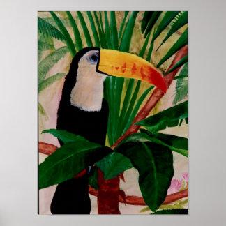 Toucanの鳥の南アフリカのジャングルの鳥の芸術 ポスター