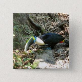 Toucanは森林床の木の根でとまります 5.1cm 正方形バッジ