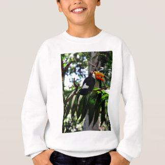 Toucan 3 スウェットシャツ