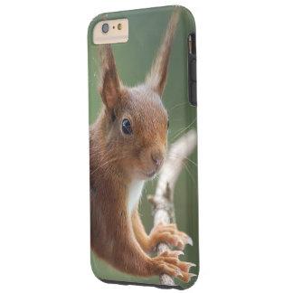 TOUGH iPhone 6 PLUS ケース