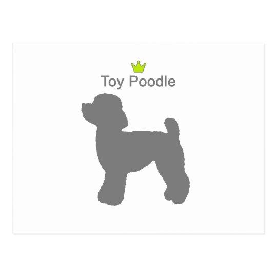 ToyPoodle g5 ポストカード