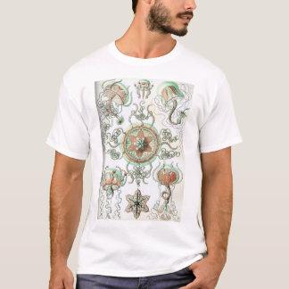 Trachomedusaeの生物学のTシャツ-エルンスト・ヘッケル Tシャツ