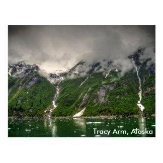 Tracyの腕、アラスカ ポストカード