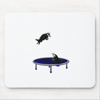 trampoliningアナグマ マウスパッド
