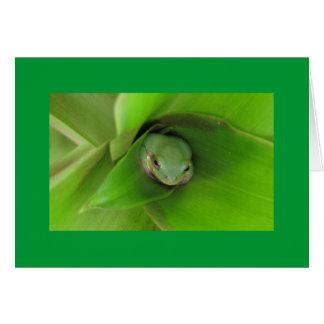treefrog1 カード