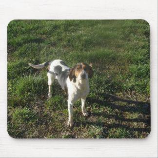 Treeingの歩行者のCoonhoundのマウスパッド マウスパッド