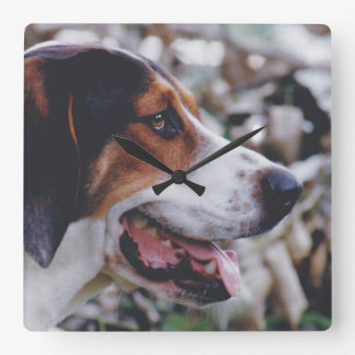 Treeingの歩行者のCoonhoundの時計 スクエア壁時計