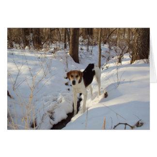 Treeingの歩行者のCoonhoundカード カード