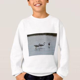 Tricoloredの鷲の赤味がかった白鷺の鳥の自然 スウェットシャツ
