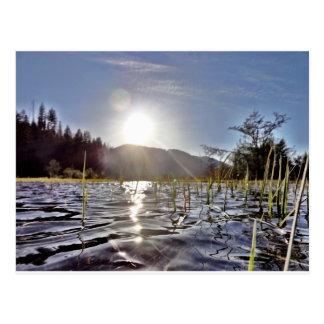 trout湖のPeacefull水 ポストカード