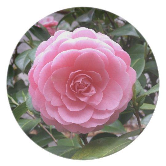 Tubaki Camellia Flower プレート