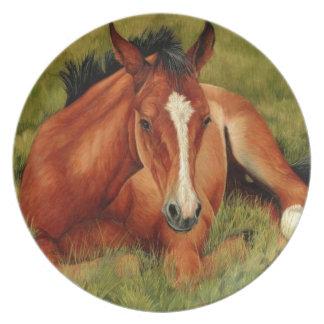 Tuckeredの休息の子馬のプレート プレート