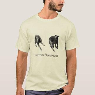 TuirenのTシャツのスコットランド人のDeerhoundの民謡 Tシャツ