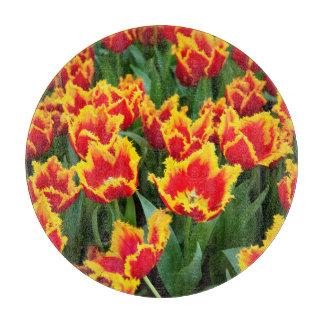 Tulipaファビオ、Keukenhofのオランダ カッティングボード