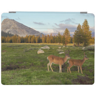Tuolumne草原、ヨセミテ iPadスマートカバー