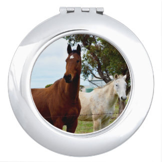 Two_Attractive_Horses_Ladies_Compact_Mirror.