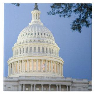 U.S. 薄暗がり、Washington D.C. (地区の国会議事堂 タイル
