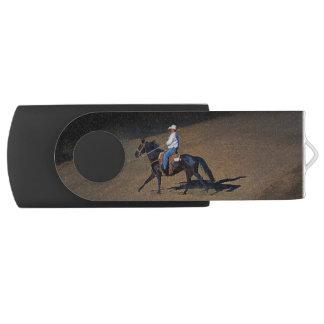 USB装置の単独カウボーイそして彼の馬の芸術 USBフラッシュドライブ