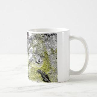 UtahraptorsとTレックス間 コーヒーマグカップ