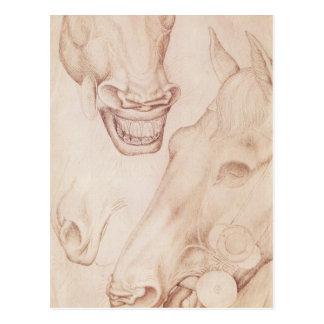 Vallardiのアルバムからの馬の頭部、 ポストカード
