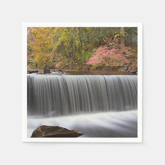 Vanderbuiltの秋の滝 スタンダードカクテルナプキン