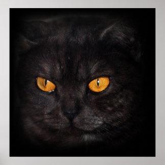 venezia猫ポスター ポスター