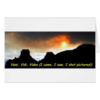 Veni Vidiのビデオ カード