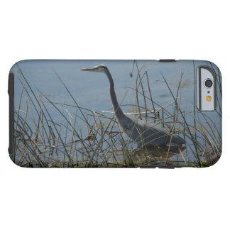 Vieraの沼地の素晴らしい青鷲 ケース