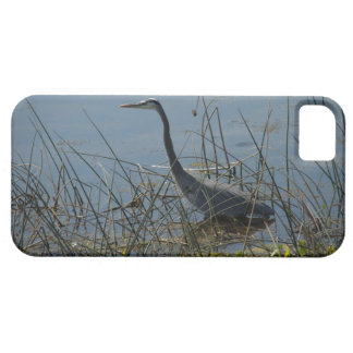 Vieraの沼地の素晴らしい青鷲 iPhone SE/5/5s ケース