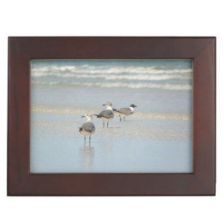 VILANOのビーチの鳥の記念品箱 ジュエリーボックス